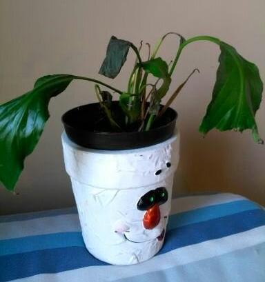 pathetic plant
