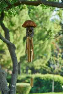 wind chime hanging under tree